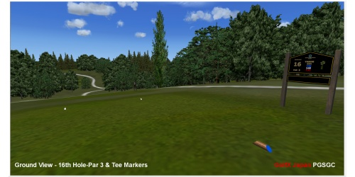 20_golfx_jp_ground_view-16th_hole-par_3__tee_markers